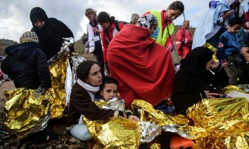 פליטות ומבקשות מקלט לסביות בישראל